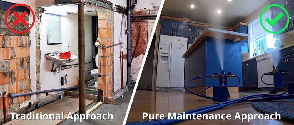 mold removal, pure maintenance, clean