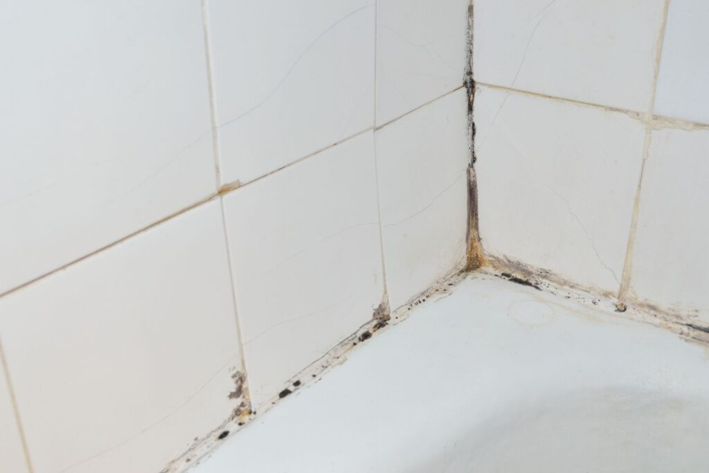 black mold in bathroom tile and grout
