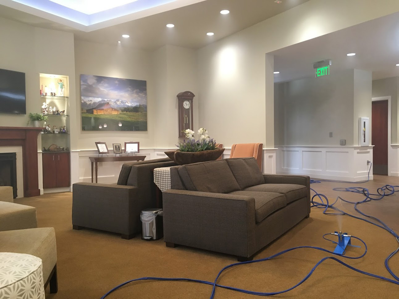 Home Furniture Mold Removal
